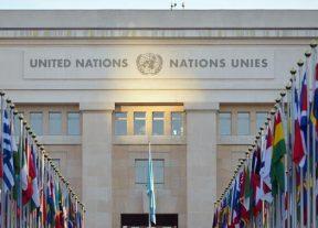 الأمم المتحدة: خبير دولي يؤكد عدم شرعية تمثيل (البوليساريو) للصحراويين
