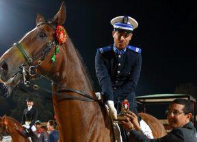 إقصائيات بطولة المغرب لترويض الخيول فئة أ:مقدم الشرطة عبد الرزاق العنوتي يفوز بجائزة وكالة المغرب العربي للأنباء