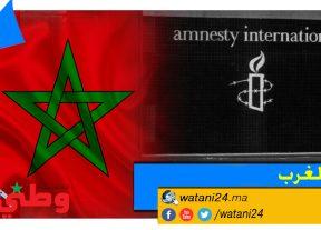 الحقد الدفين يقود منظمة العفو الدولية إلي تعبئة 17 منبرا إعلاميا ضد المملكة المغربية